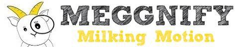 Meggnify Pte Ltd